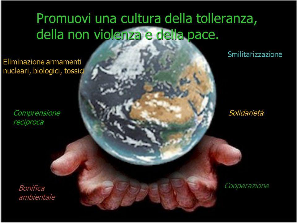 Promuovi una cultura della tolleranza, della non violenza e della pace.