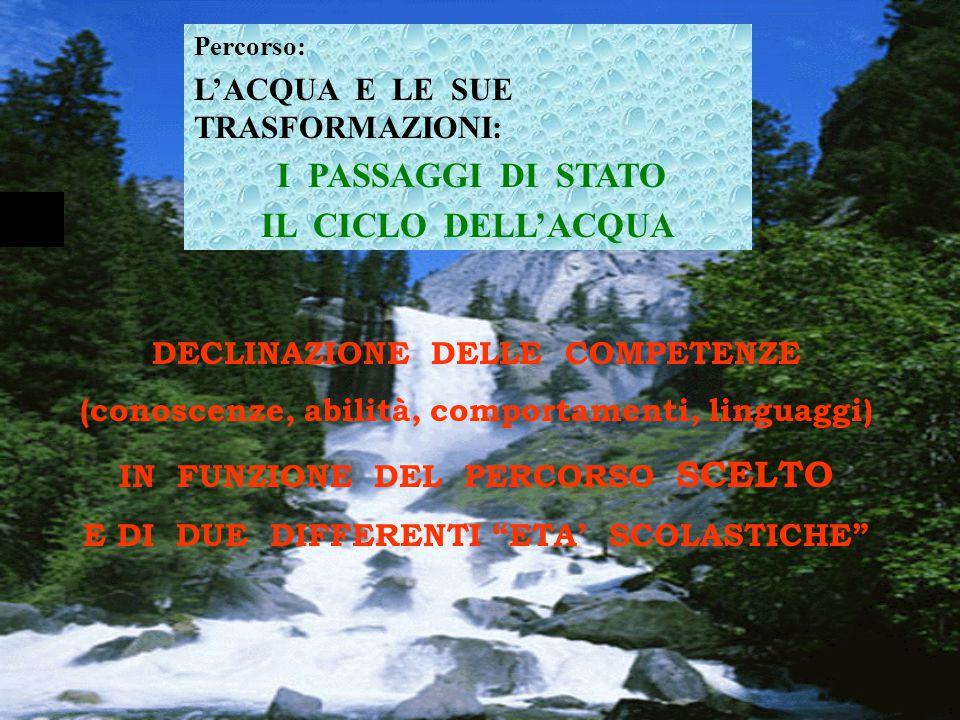 ACQUA IL CICLO DELL'ACQUA PASSAGGI DI STATO CALDO FREDDO