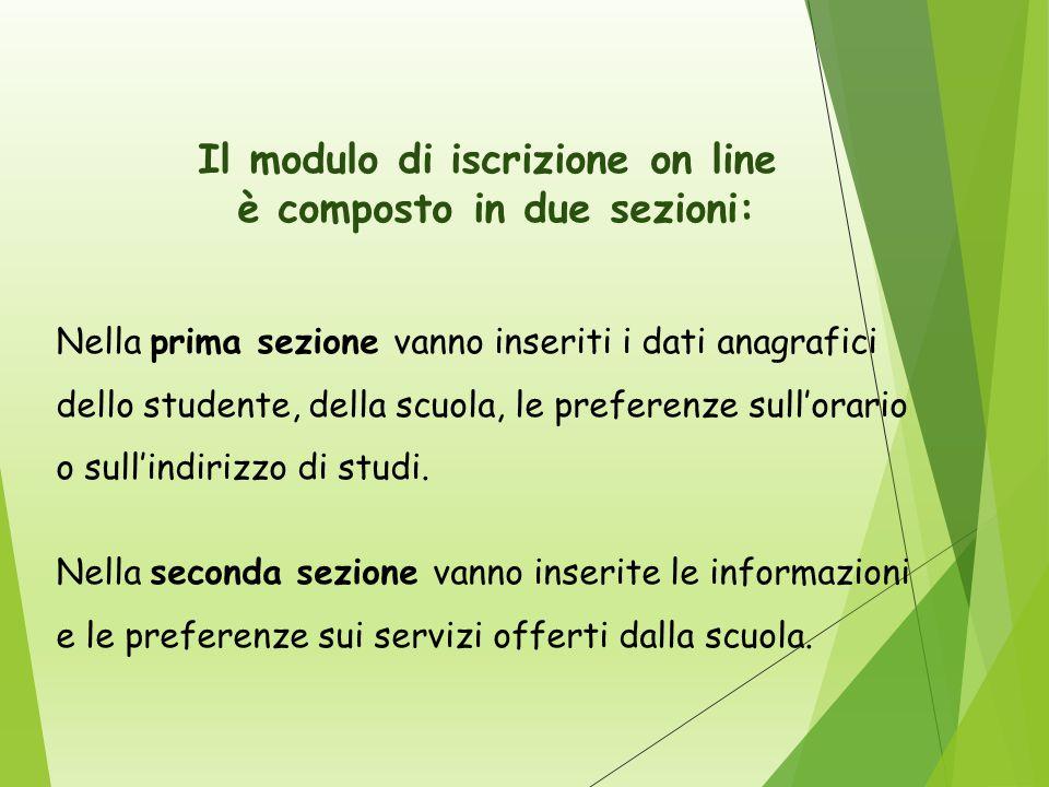 Il modulo di iscrizione on line è composto in due sezioni: Nella prima sezione vanno inseriti i dati anagrafici dello studente, della scuola, le preferenze sull'orario o sull'indirizzo di studi.