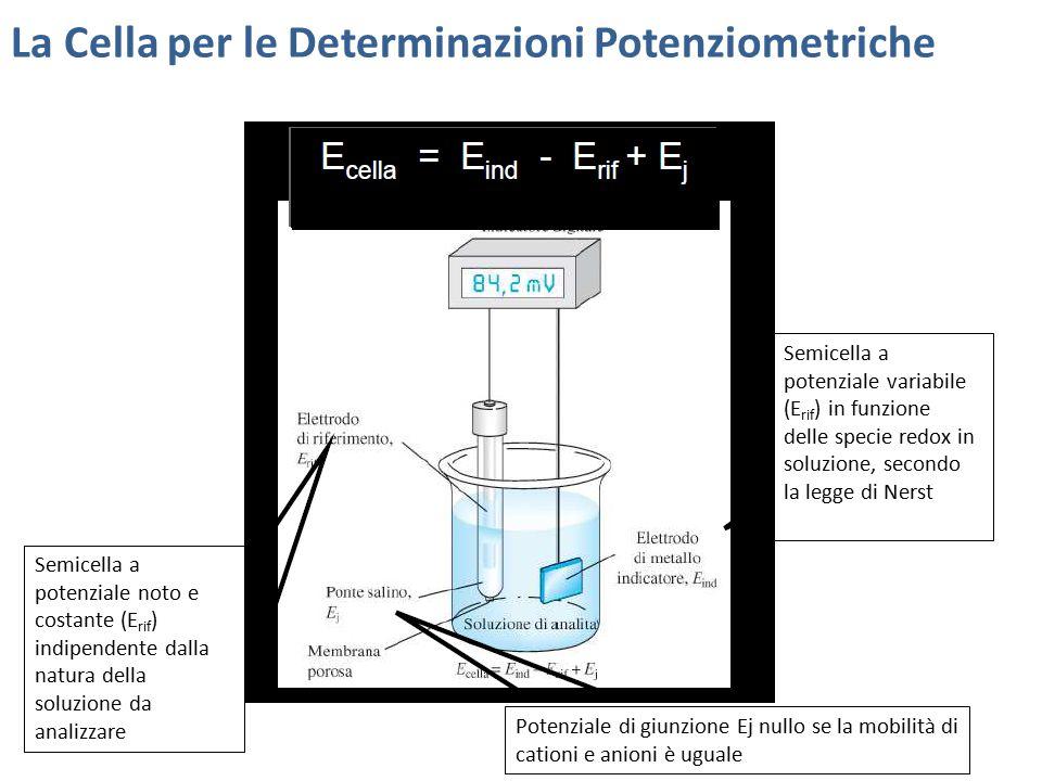 La Cella per le Determinazioni Potenziometriche Semicella a potenziale noto e costante (E rif ) indipendente dalla natura della soluzione da analizzar