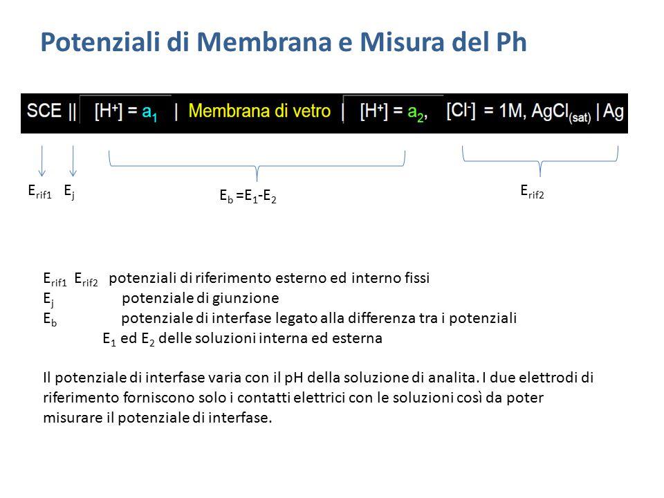 Potenziali di Membrana e Misura del Ph E rif1 EjEj E b =E 1 -E 2 E rif2 E rif1 E rif2 potenziali di riferimento esterno ed interno fissi E j potenzial