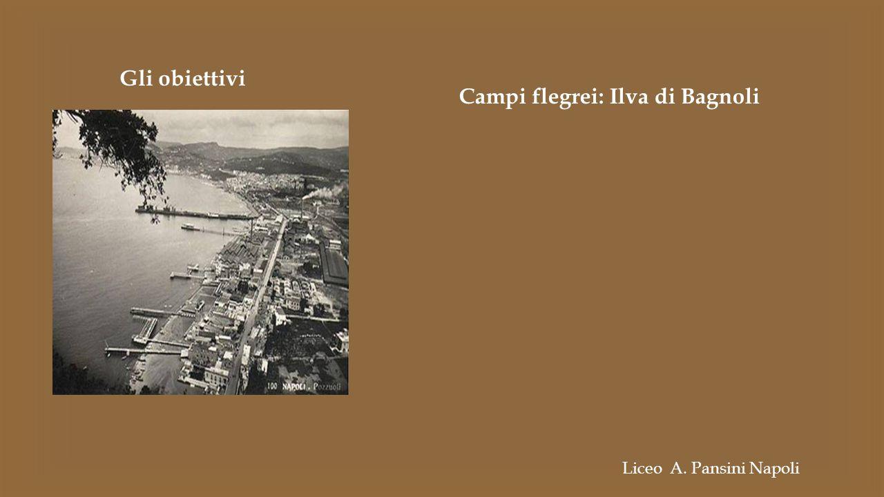 Gli obiettivi Campi flegrei: Ilva di Bagnoli Liceo A. Pansini Napoli