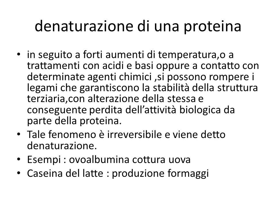 denaturazione di una proteina in seguito a forti aumenti di temperatura,o a trattamenti con acidi e basi oppure a contatto con determinate agenti chim