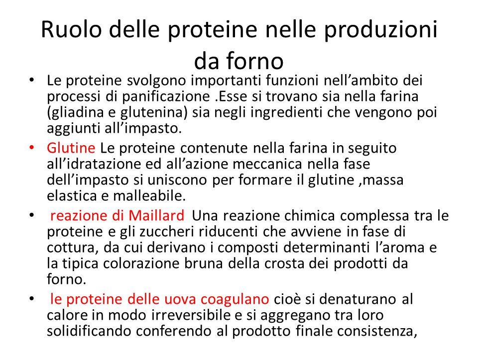 Ruolo delle proteine nelle produzioni da forno Le proteine svolgono importanti funzioni nell'ambito dei processi di panificazione.Esse si trovano sia