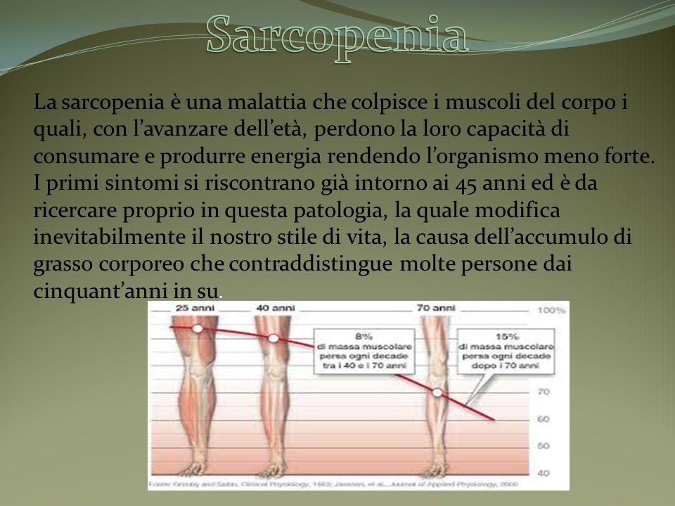 La sarcopenia è una malattia che colpisce i muscoli del corpo i quali, con l'avanzare dell'età, perdono la loro capacità di consumare e produrre energ