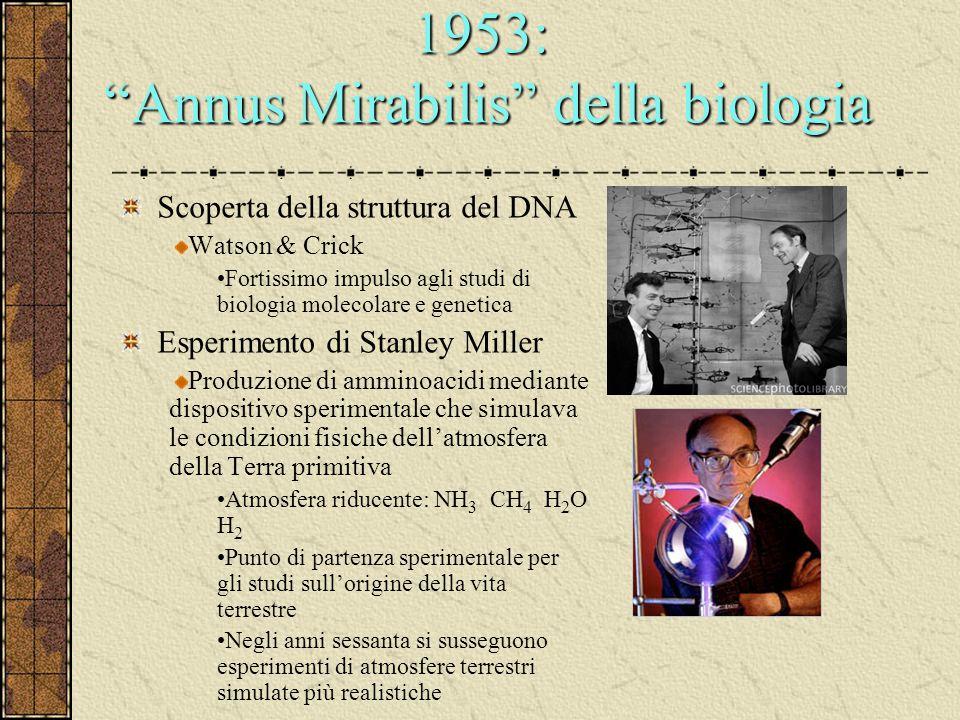 """1953: """"Annus Mirabilis"""" della biologia Scoperta della struttura del DNA Watson & Crick Fortissimo impulso agli studi di biologia molecolare e genetica"""