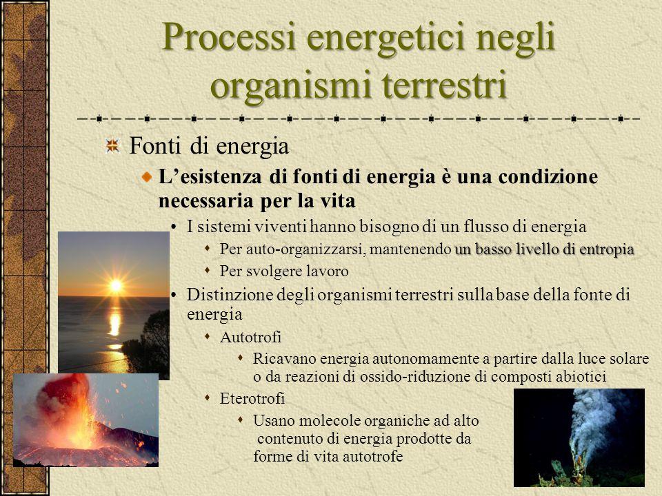 Processi energetici negli organismi terrestri Fonti di energia L'esistenza di fonti di energia è una condizione necessaria per la vita I sistemi viven