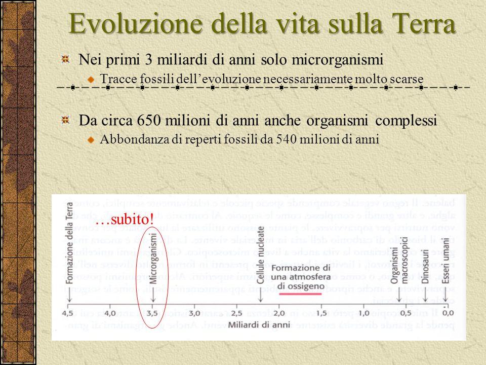 Evoluzione della vita sulla Terra Nei primi 3 miliardi di anni solo microrganismi Tracce fossili dell'evoluzione necessariamente molto scarse Da circa