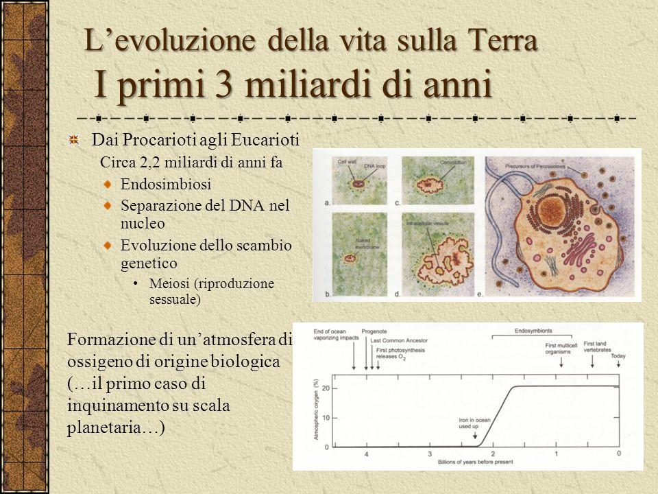 L'evoluzione della vita sulla Terra I primi 3 miliardi di anni Dai Procarioti agli Eucarioti Circa 2,2 miliardi di anni fa Endosimbiosi Separazione de