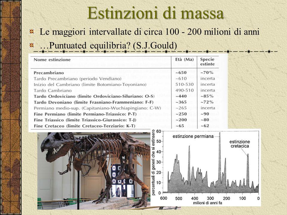 Estinzioni di massa Le maggiori intervallate di circa 100 - 200 milioni di anni …Puntuated equilibria? (S.J.Gould)