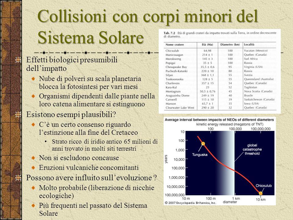 Collisioni con corpi minori del Sistema Solare Effetti biologici presumibili dell'impatto Nube di polveri su scala planetaria blocca la fotosintesi pe