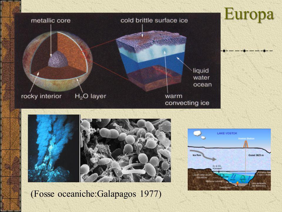 Europa Europa (Fosse oceaniche:Galapagos 1977)