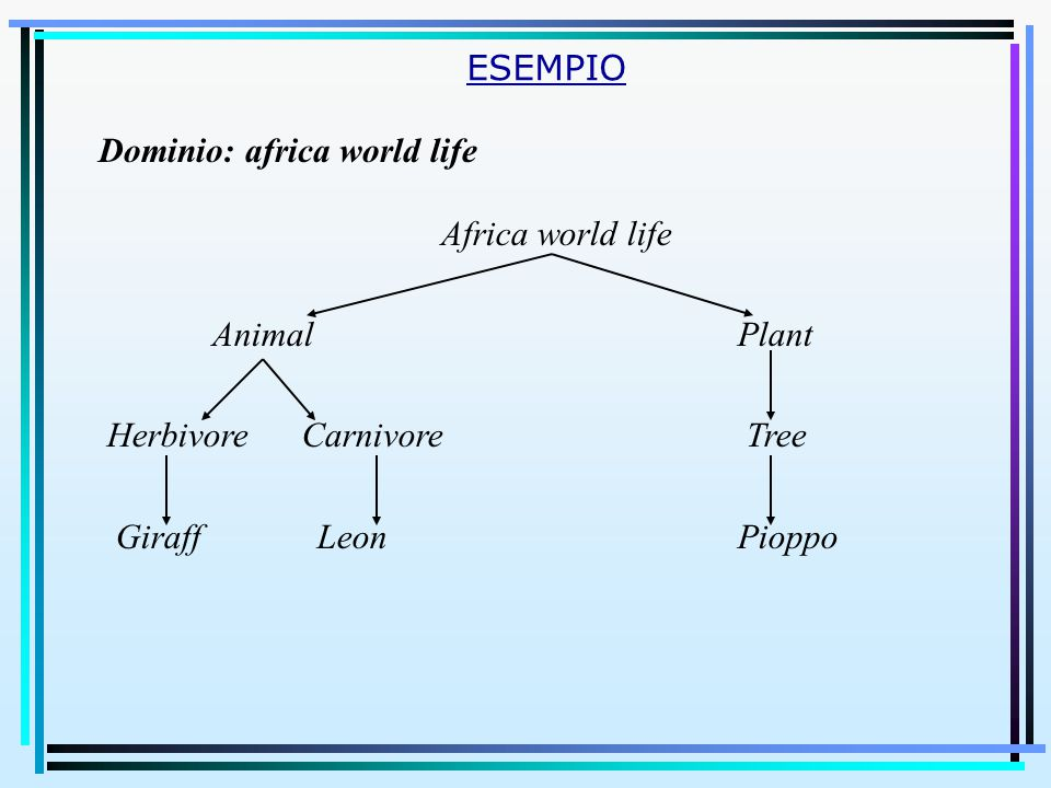 Africa world life AnimalPlant Herbivore Carnivore Tree Giraff Leon Pioppo ESEMPIO Dominio: africa world life
