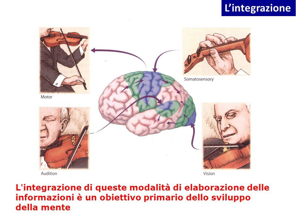 L ' integrazione di queste modalità di elaborazione delle informazioni è un obiettivo primario dello sviluppo della mente L'integrazione