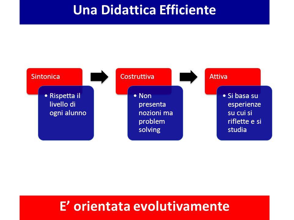 Una Didattica Efficiente E' orientata evolutivamente Sintonica Rispetta il livello di ogni alunno Costruttiva Non presenta nozioni ma problem solving