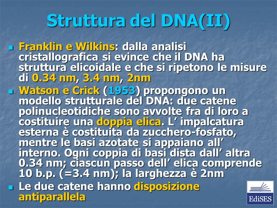 Struttura del DNA(II) Franklin e Wilkins: dalla analisi cristallografica si evince che il DNA ha struttura elicoidale e che si ripetono le misure di 0
