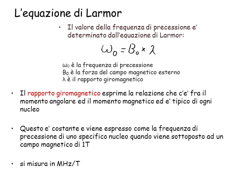 L'equazione di Larmor Il valore della frequenza di precessione e' determinato dall'equazione di Larmor: ω 0 è la frequenza di precessione B 0 è la for