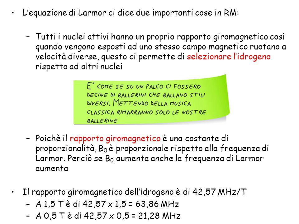 L'equazione di Larmor ci dice due importanti cose in RM: –Tutti i nuclei attivi hanno un proprio rapporto giromagnetico così quando vengono esposti ad
