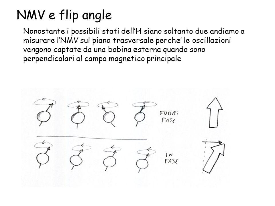 NMV e flip angle Nonostante i possibili stati dell'H siano soltanto due andiamo a misurare l'NMV sul piano trasversale perche' le oscillazioni vengono