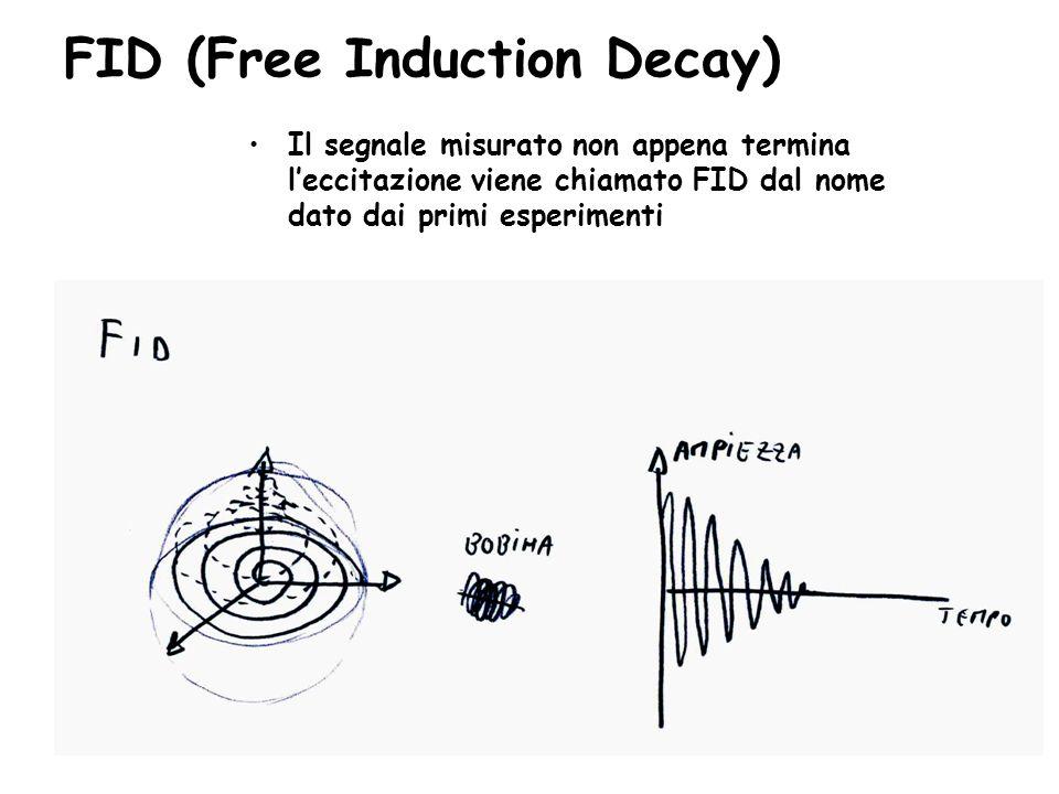 FID (Free Induction Decay) Il segnale misurato non appena termina l'eccitazione viene chiamato FID dal nome dato dai primi esperimenti