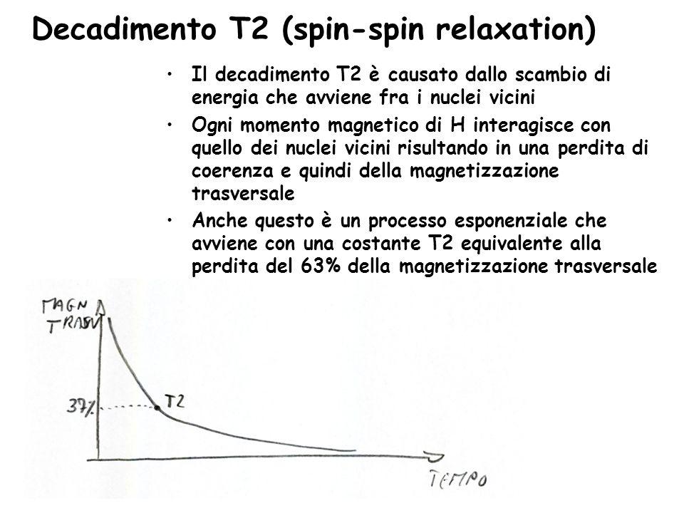 Decadimento T2 (spin-spin relaxation) Il decadimento T2 è causato dallo scambio di energia che avviene fra i nuclei vicini Ogni momento magnetico di H