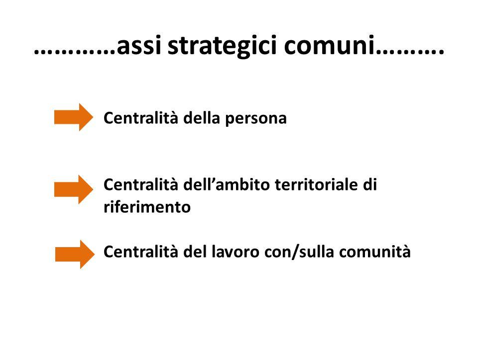 …………assi strategici comuni………. Centralità della persona Centralità dell'ambito territoriale di riferimento Centralità del lavoro con/sulla comunità