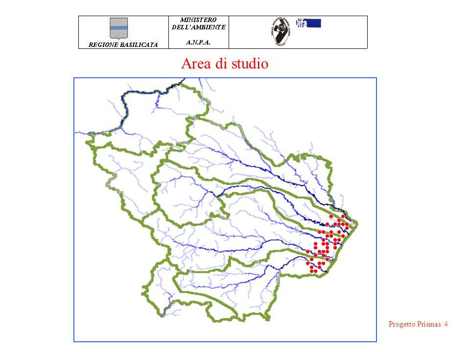 CONOSCENZE PREGRESSE: Progetto Prismas 5 GEOLOGIA AREA: Dal punto di vista geologico, l'area ricade nella porzione meridionale dell'Avanfossa Appenninica.