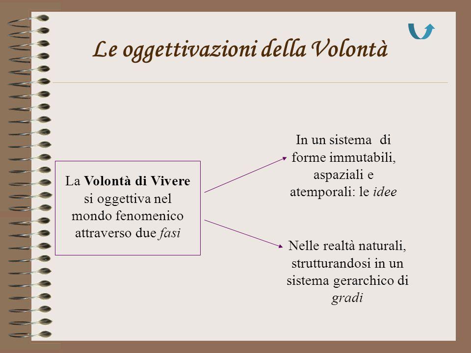 Le oggettivazioni della Volontà La Volontà di Vivere si oggettiva nel mondo fenomenico attraverso due fasi In un sistema di forme immutabili, aspazial