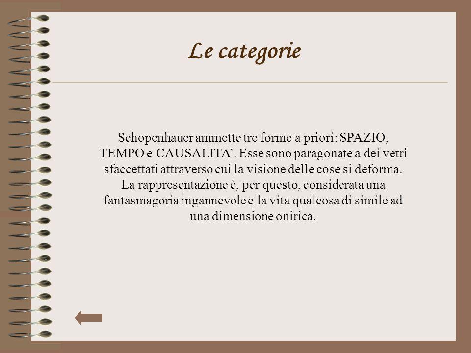 Le categorie Schopenhauer ammette tre forme a priori: SPAZIO, TEMPO e CAUSALITA'. Esse sono paragonate a dei vetri sfaccettati attraverso cui la visio