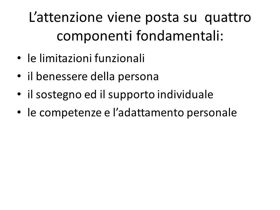L'attenzione viene posta su quattro componenti fondamentali: le limitazioni funzionali il benessere della persona il sostegno ed il supporto individuale le competenze e l'adattamento personale