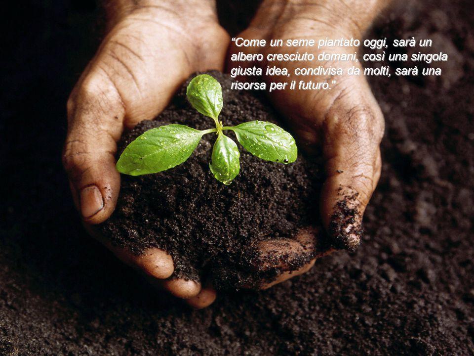 """""""Come un seme piantato oggi, sarà un albero cresciuto domani, così una singola giusta idea, condivisa da molti, sarà una risorsa per il futuro."""