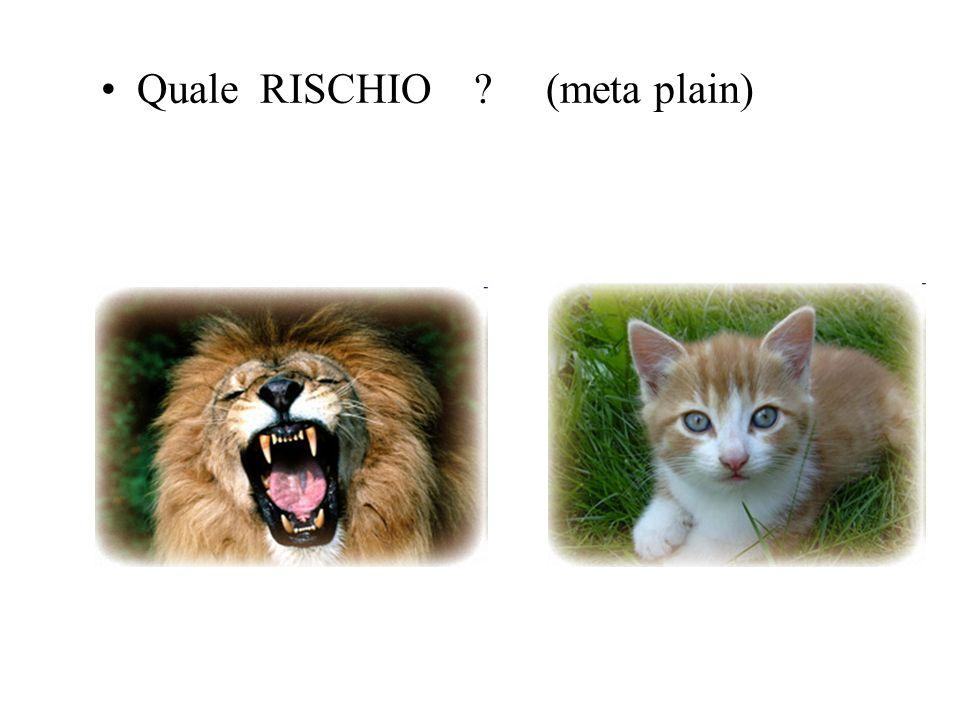 Quale RISCHIO ? (meta plain)