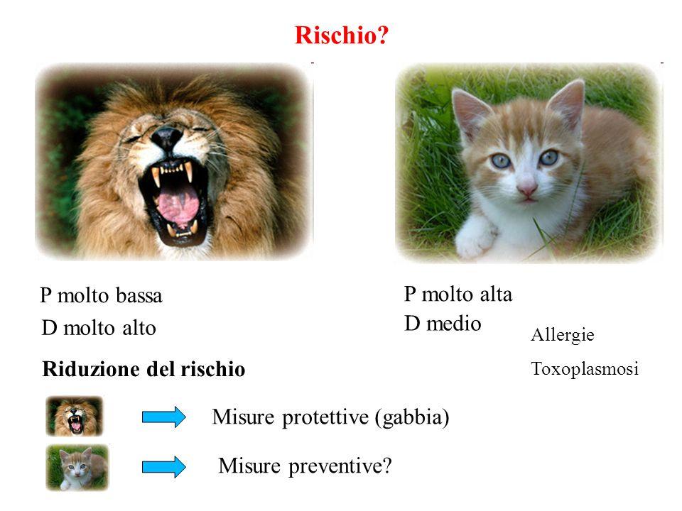 P molto bassa Rischio? D molto alto P molto alta D medio Riduzione del rischio Allergie Toxoplasmosi Misure protettive (gabbia) Misure preventive?