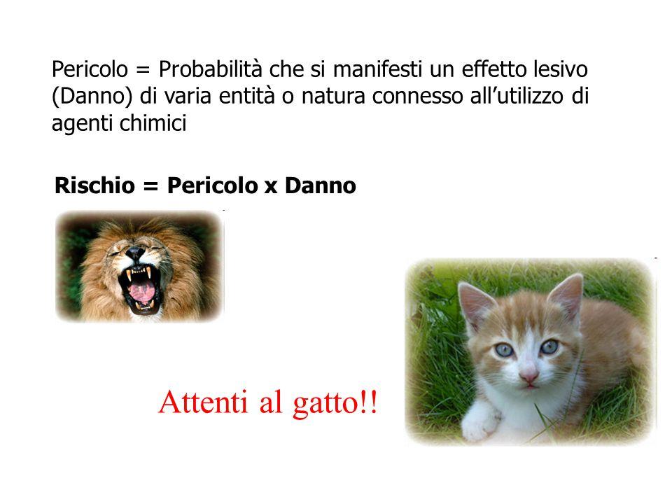 Pericolo = Probabilità che si manifesti un effetto lesivo (Danno) di varia entità o natura connesso all'utilizzo di agenti chimici Rischio = Pericolo