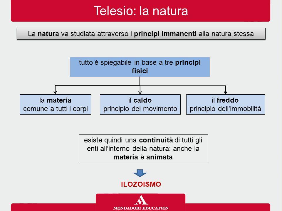 Telesio: la natura La natura va studiata attraverso i principi immanenti alla natura stessa esiste quindi una continuità di tutti gli enti all'interno
