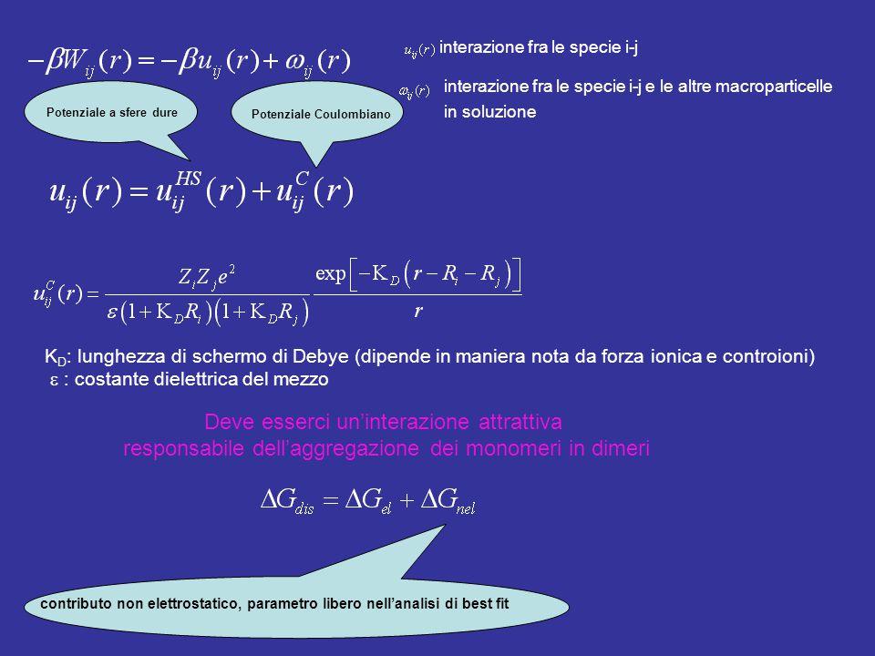 interazione fra le specie i-j interazione fra le specie i-j e le altre macroparticelle in soluzione Potenziale a sfere dure Potenziale Coulombiano K D : lunghezza di schermo di Debye (dipende in maniera nota da forza ionica e controioni)  : costante dielettrica del mezzo Deve esserci un'interazione attrattiva responsabile dell'aggregazione dei monomeri in dimeri contributo non elettrostatico, parametro libero nell'analisi di best fit