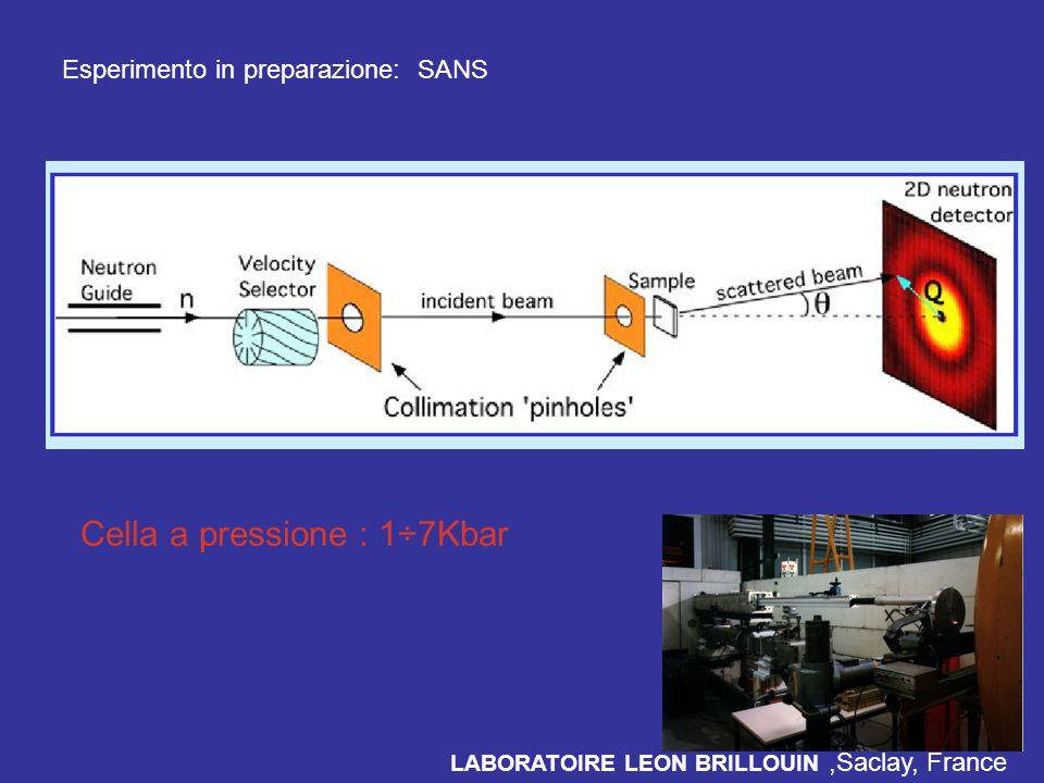 Esperimento in preparazione: SANS LABORATOIRE LEON BRILLOUIN,Saclay, France Cella a pressione : 1÷7Kbar