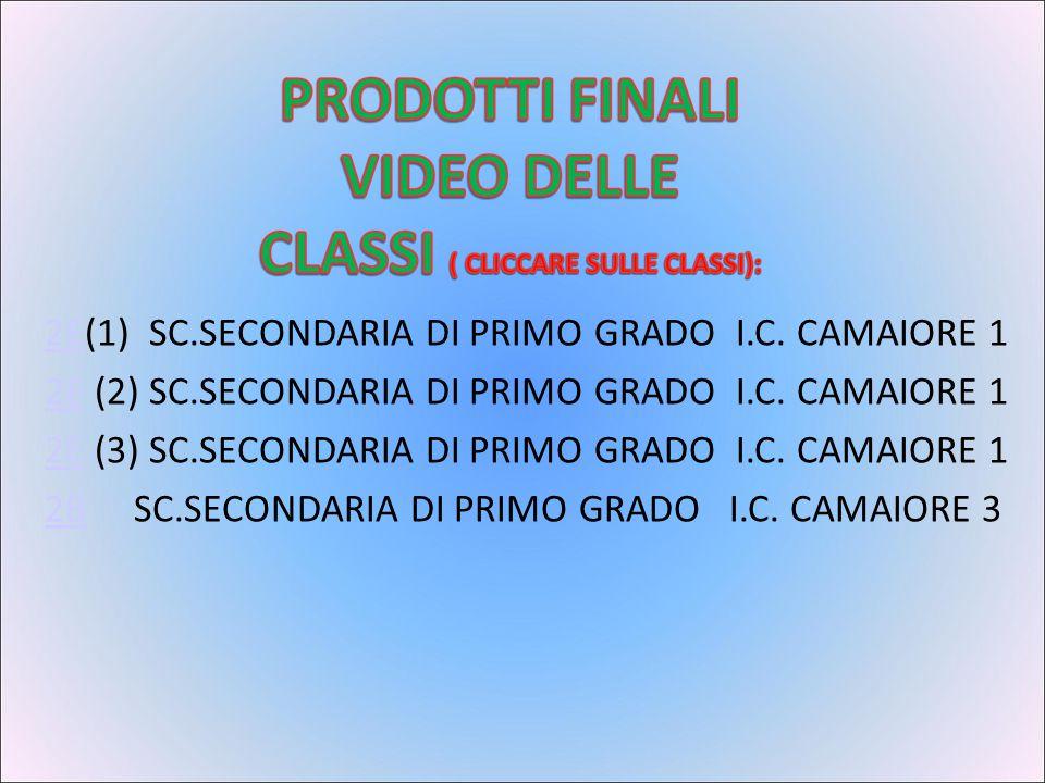 2E2E(1) SC.SECONDARIA DI PRIMO GRADO I.C.CAMAIORE 1 2E2E (2) SC.SECONDARIA DI PRIMO GRADO I.C.
