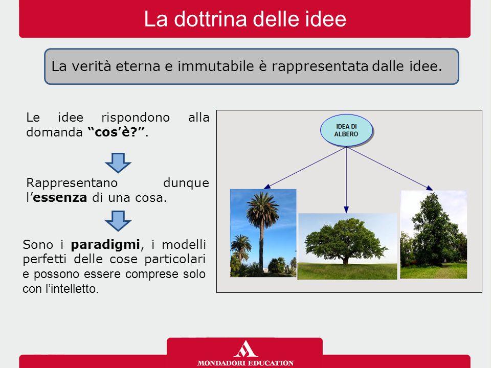 """La dottrina delle idee Le idee rispondono alla domanda """"cos'è?"""". Rappresentano dunque l'essenza di una cosa. Sono i paradigmi, i modelli perfetti dell"""