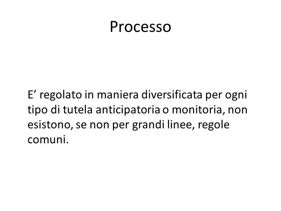 Processo E' regolato in maniera diversificata per ogni tipo di tutela anticipatoria o monitoria, non esistono, se non per grandi linee, regole comuni.