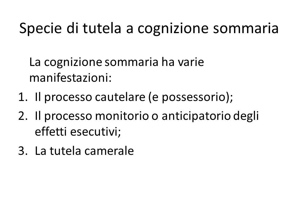 Specie di tutela a cognizione sommaria La cognizione sommaria ha varie manifestazioni: 1.Il processo cautelare (e possessorio); 2.Il processo monitorio o anticipatorio degli effetti esecutivi; 3.La tutela camerale