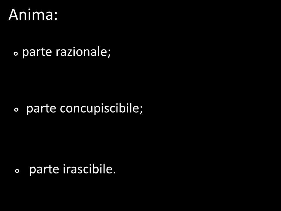 Anima: ° ° ° parte razionale; parte concupiscibile; parte irascibile.