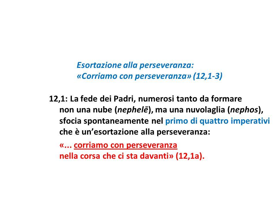 Esortazione alla perseveranza: «Corriamo con perseveranza» (12,1-3) 12,1: La fede dei Padri, numerosi tanto da formare non una nube (nephelē), ma una