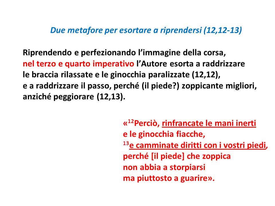 Due metafore per esortare a riprendersi (12,12-13) Riprendendo e perfezionando l'immagine della corsa, nel terzo e quarto imperativo l'Autore esorta a