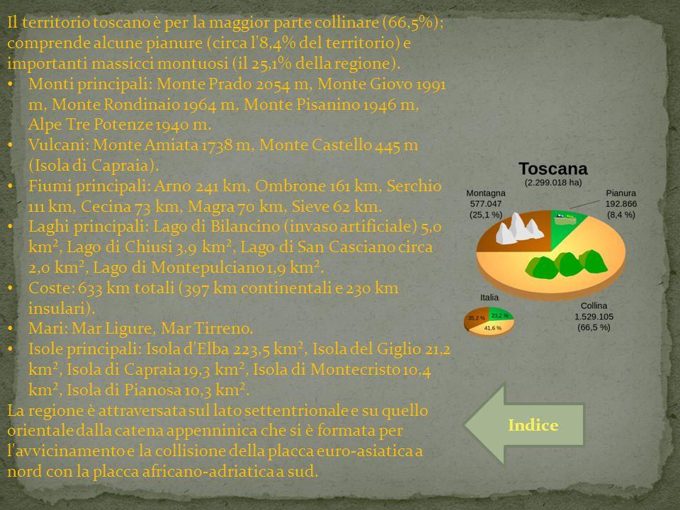 Il territorio toscano è per la maggior parte collinare (66,5%); comprende alcune pianure (circa l'8,4% del territorio) e importanti massicci montuosi
