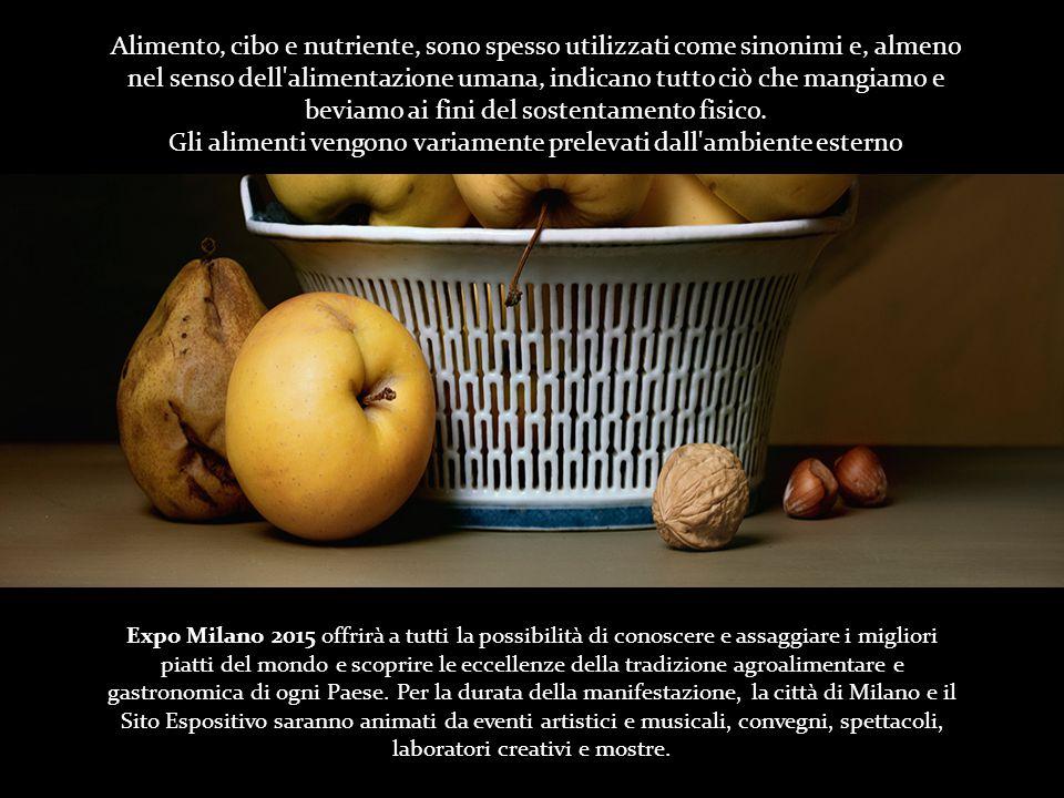 Expo Milano 2015 offrirà a tutti la possibilità di conoscere e assaggiare i migliori piatti del mondo e scoprire le eccellenze della tradizione agroalimentare e gastronomica di ogni Paese.