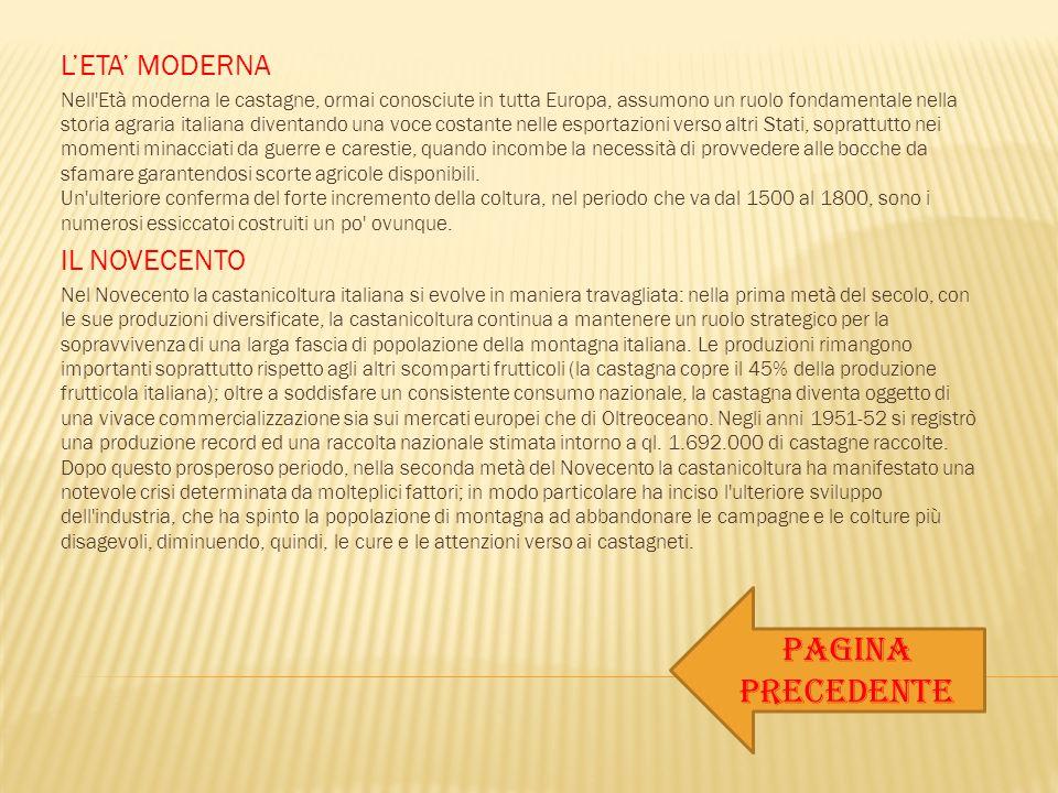 L'ETA' MODERNA Nell'Età moderna le castagne, ormai conosciute in tutta Europa, assumono un ruolo fondamentale nella storia agraria italiana diventando