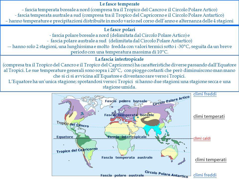 Le fasce polari - fascia polare boreale a nord (delimitata dal Circolo Polare Artico) e - fascia polare australe a sud (delimitata dal Circolo Polare