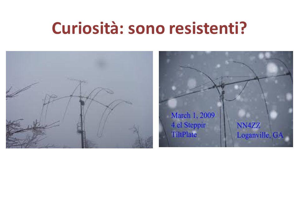 Curiosità: sono resistenti?