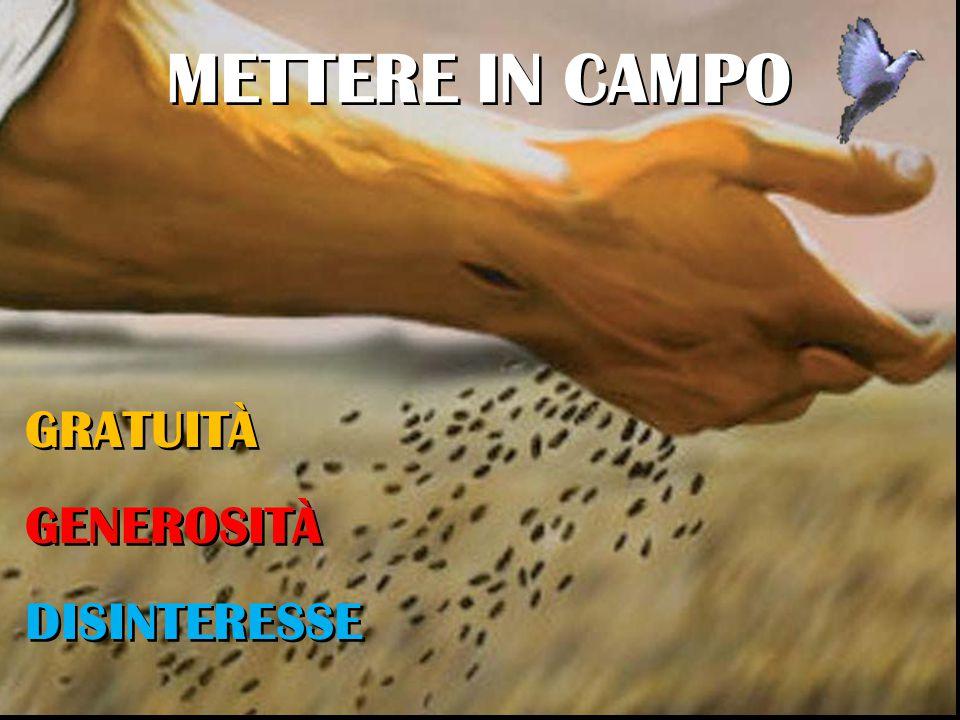 GRATUITÀ GENEROSITÀ DISINTERESSE GRATUITÀ GENEROSITÀ DISINTERESSE METTERE IN CAMPO